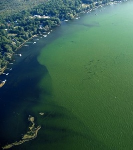 Algae bloom, captured in this aerial photo by John McCredie, may be one of the issues tackled by a panel of local experts during a discussion about Chautauqua Lake at 7 p.m. Monday, April 29, at Prendergast Library.